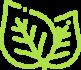 Dobór gatunków roślin Konin